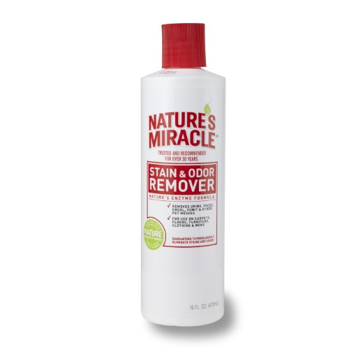 natures-miracle-stain-odor-remover-16-ounce-pour-bottle-5122
