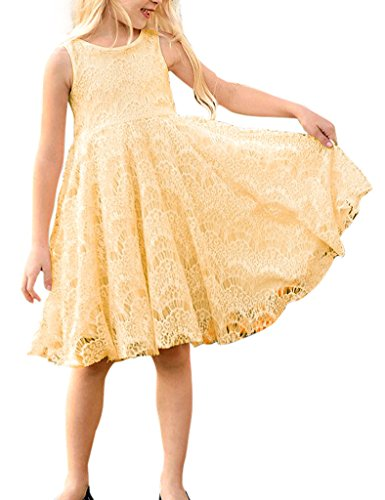 Elegant Girls Summer Princess Lace Sleeveless Party Pleated Dress