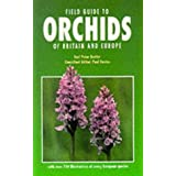 Field Guide to Orchids of Britain and Europeby Karl Peter Buttler