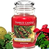 Yankee Candle Housewarmer Jar (Red Berry & Cedar) - Medium (14.5 oz)