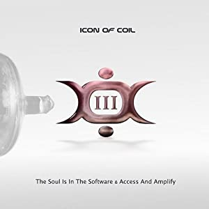 III-The Soul Is In The Software/Access and Amplify