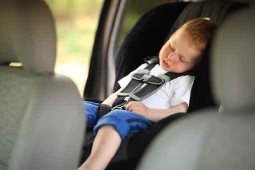 Boy Sleeping in Child Car Seat - 30