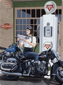 Harley-Davidson® Sturgis Tin Sign