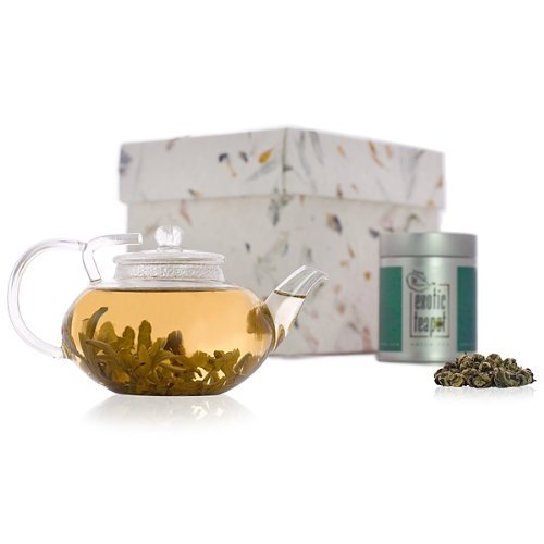 Green Tea Discovery Gift Tea Set with Glass Teapot