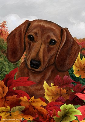 ... Dachshund Red   Tamara Burnett Fall Leaves Garden Flags
