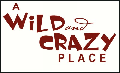 Wall Decor Plus More A Wild And Crazy Place Wall Sticker Saying for Nursery or Kid's Room Decor 23W x 12H - Red Red