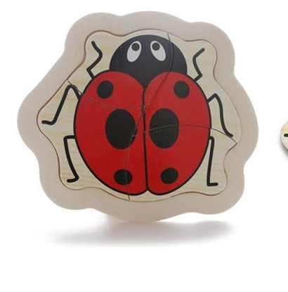 Thinkmax Lady Beetle Puzzle Toy Model front-586919