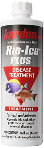 Kordon Rid-Ich Plus Disease Treatment 16 Oz