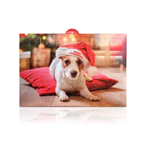 lucky-pet-getreidefreier-adventskalender-fur-hunde