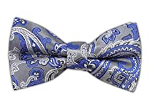100% Silk Woven Silver Chicago Paisley Self-Tie Bow Tie