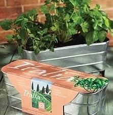 buy Organic Italian Herb Mix