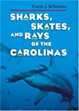 Sharks, Skates, and Rays of the Carolinas