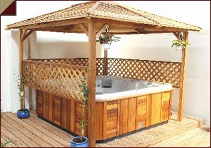 Laguna Hot Tubs Jacuzzi Spa And Recreation Room