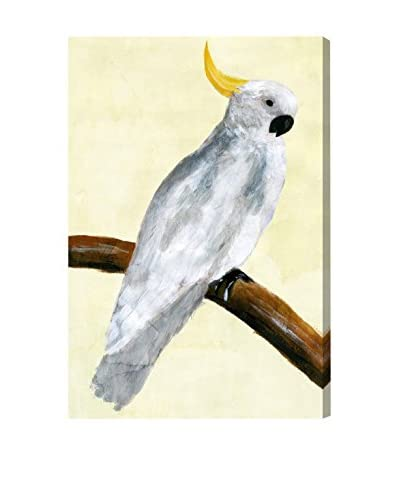 Oliver Gal 'Elegant Cockatoo' Canvas Art