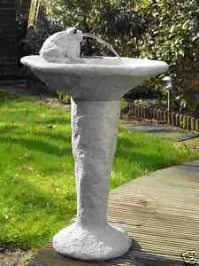 Solar Frog Fountain and Bird Bath