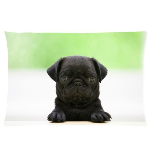 Butuku Lovely Pug Baby Dog Custom Personalized Rectangle Pillow Case 24X16 (One Side) front-554163
