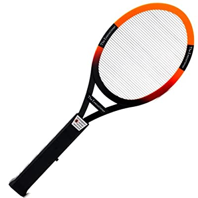 The ExecutionerTM Fly Swat Wasp Bug Mosquito Swatter Zapper