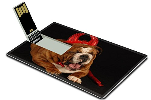 [MSD 16GB USB Flash Drive 2.0 Memory Stick Credit Card Size IMAGE ID: 4134375 english bulldog dressed up as a devil on a black] (Trick Or Treat Costumes Images)