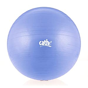 Fitness by Cathe 75cm 1000-Pound Anti-Burst Body Ball with DVD (Sky Blue)