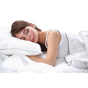 European Comfort 100% Hypoallergenic Slumber Down Alternative Bed Pillows, STANDARD Set of 2