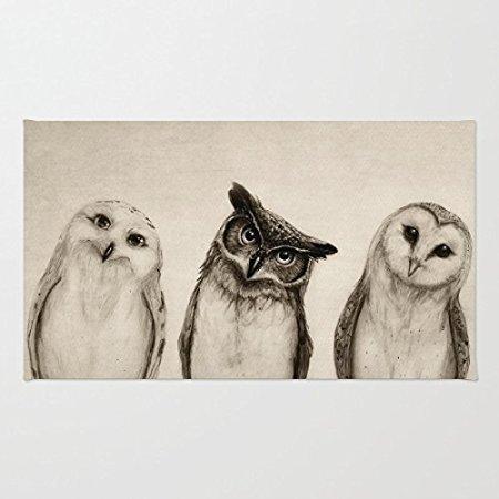 TSlook Fashions Doormat Three Cute Owl Indoor/Outdoor/Front Welcome Door Mat(23.6