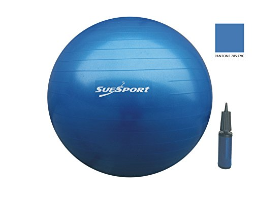 SUESPORT 75cm Anti-Burst Gym Ball Kit With Pump,3-Size Available, Blue