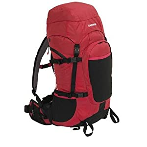 Wenger Almer Backpack