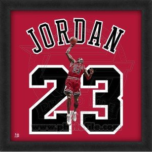 Michael Jordan Chicago Bulls 20x20 Framed Uniframe Jersey Photo by Biggsports