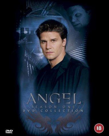 Angel - Season 1 [DVD] [2000]