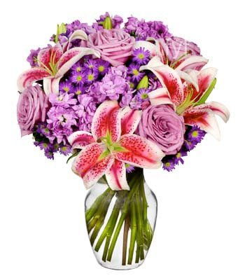 From You Flowers   Delivery   Lavender Bliss   FREE Vase Included