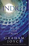 Indigo (0140270981) by GRAHAM JOYCE