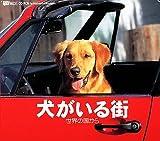 犬がいる街〜世界の国から〜