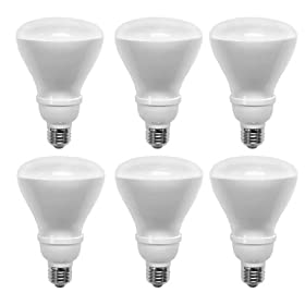  TCP 14-Watt Soft White Compact Fluorescent Flood Light Bulb (6 Pack)