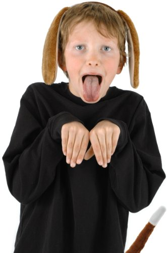 Puppy Dog Ears and Tail Costume Accessory Kit