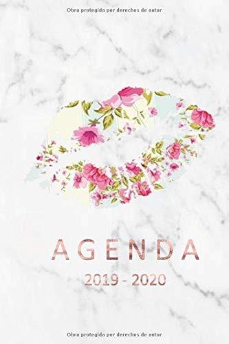 agenda 2019- 2020 agenda 2019-2020 del 1 de julio del 2019 al 31 de diciembre del 2020 ideal para el regreso a clase con 80 hojas planificación semanal  [diario, re planificador] (Tapa Blanda)