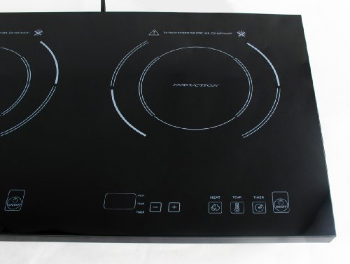 Double true induction cooktop 2 induction electric for High end induction range
