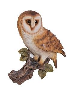 Vivid Arts Barn Owl Plaque by Vivid Arts Ltd