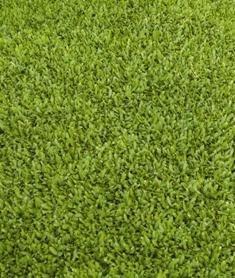 Rollrasen Als Alternative Zum Selber Saen Von Rasen