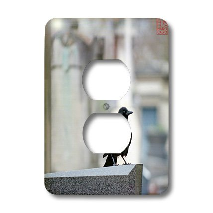 Lsp_107836_6 Nano Calvo Paris - Black Crow In Montparnasse Cemetery, Paris, France - Light Switch Covers - 2 Plug Outlet Cover