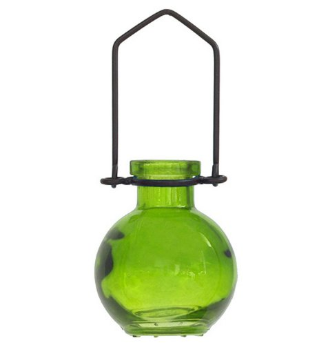 Decorative Colored Glass Hanging Wall Vase Home/Garden #2 Lime -1/pc ~ Colored Glass Bottle ~ Floral Vase ~ Colored Vase ~ Bud Vase ~ Wall Vase
