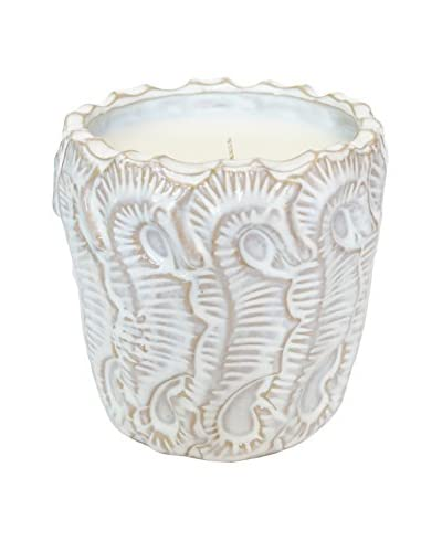 Thompson Ferrier 25.5-Oz. Driftwood & Sand White Seahorse Candle