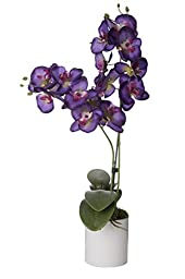 SilkenBloom Artificial Royal Purple with Magenta Buds Silk Orchid in White Round Modern Ceramic Pot