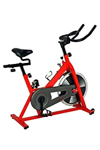 Sunny SF-B1001 Indoor Cycling Bike by Sunny Health & Fitness