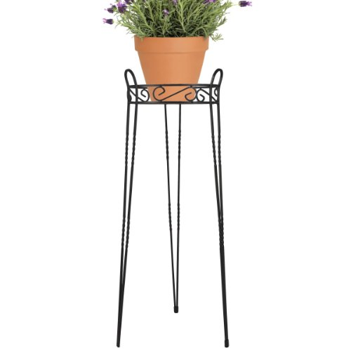 CobraCo Canterbury 30-Inch Black Scroll Top Plant Stand SCBPS1030-B (Tall Plant Stand compare prices)