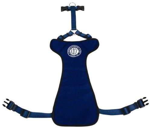 Petmate 315590 AKC Dog Seat Belt, Blue, Large, 1 x 31-39 Inches