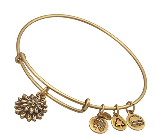 alex-and-ani-water-lily-charm-expandable-bangle-bar-bracelet