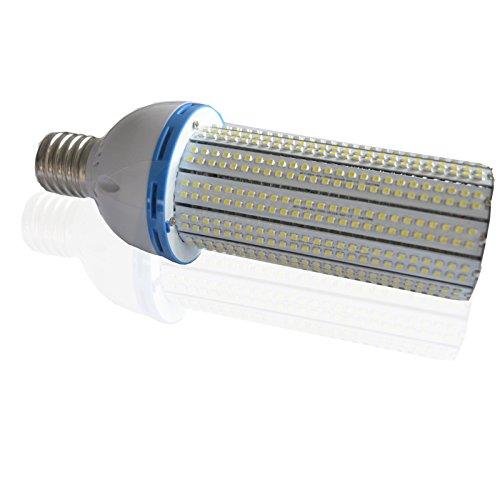 WYZM 60Watt LED Corn Light Bulb,Fit Both E39 And E26 Screw