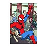 Spider-man Loves Mary Jane 2: The New Girl Digest (Marvel Adventures)