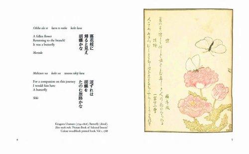Haiku Animals (Gift Books)
