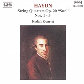 String Quartet No. 26 in G minor, Op. 20, No. 3, Hob.III:33: I. Allegro con spirito